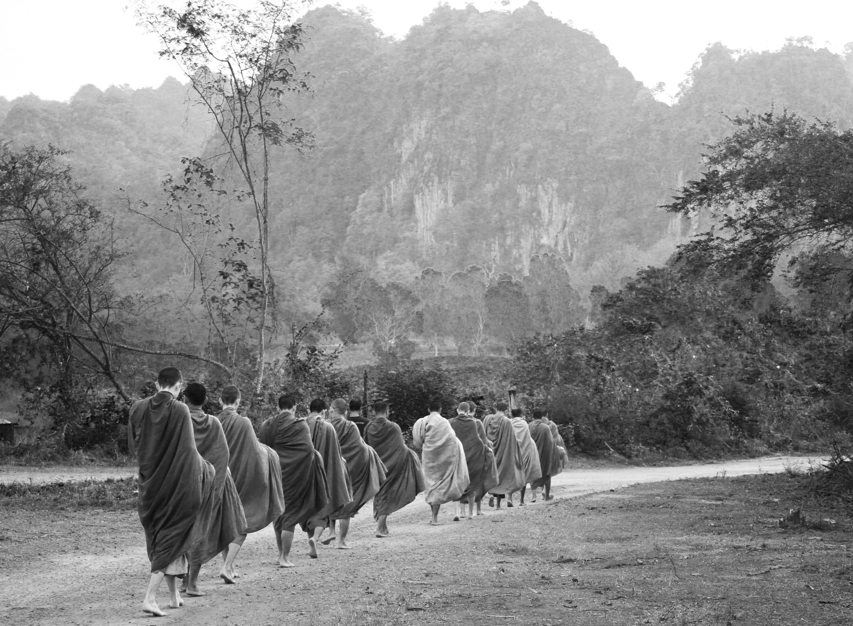 buddhist single women in forest In this article buddhism and asceticism introduction  refusing all further food, living in the forest, living under a tree,  women in buddhism.